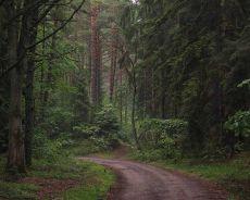 Szlaki piesze i rowerowe